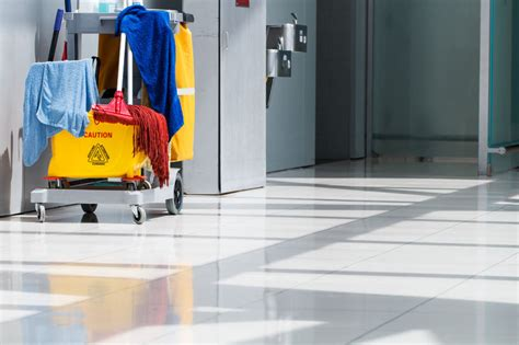 commercial cleaning st petersburg clearwater palm