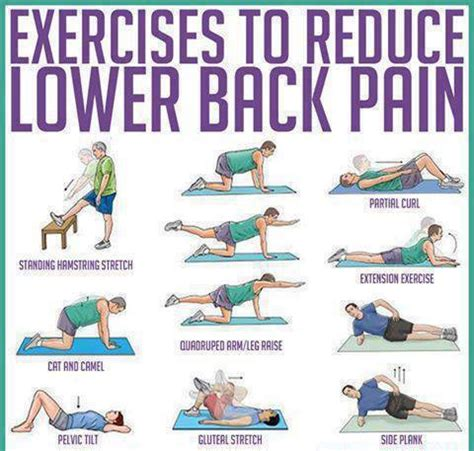 exercises to reduce lower back charts graphs