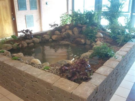 indoor ponds pondering waters l l c video image gallery proview