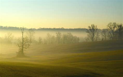 foggy    nature photography miriadnacom