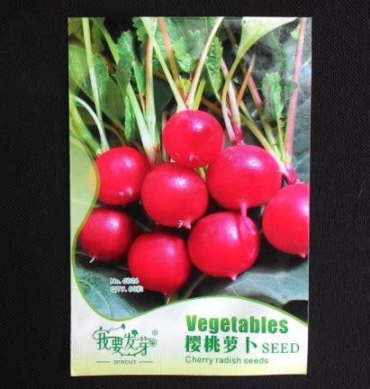 Radish Lobak Merah benih lobak cherry cherry radish 60 biji retail asia