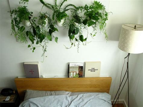 bedroom with plants bedroom plants hanging pinterest