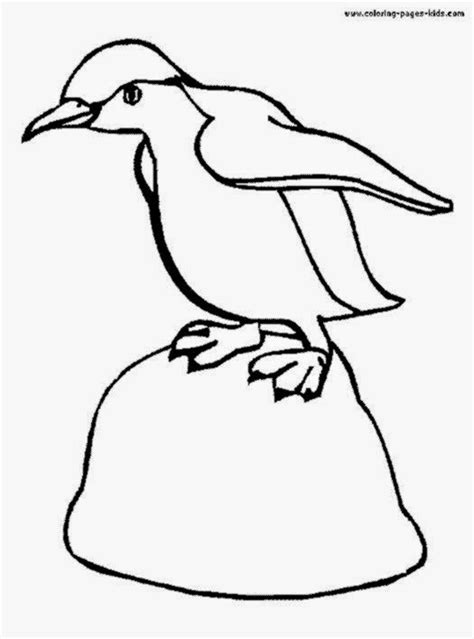 penguin habitat coloring page pictures of penguins to color free coloring pictures