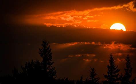 wallpaper sunset sky clouds  nature