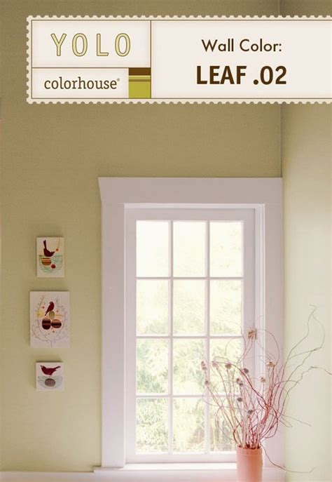 colorhouse paint inspired flat interior paint leaf 02 gallon house