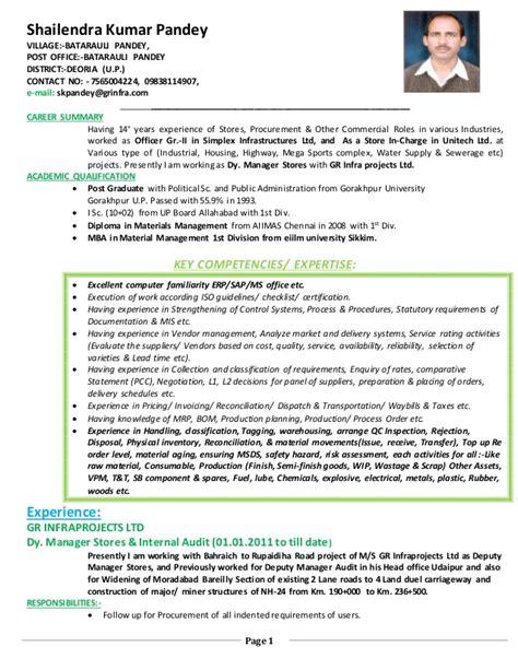 K Resume by S K Resume Copy