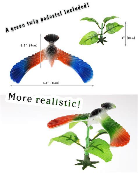 center of gravity bird template crafts