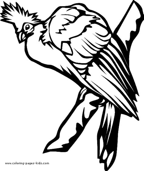 tropical bird coloring page free coloring pages of a tropical bird