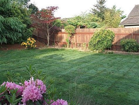 simple backyard design simple and lovely backyard