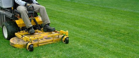 lawn care 5 common myths about lawn care in austin