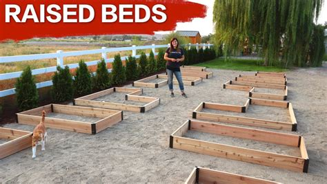 Setting Up Raised Beds Garden Answer Youtube How To Set Up A Garden Bed