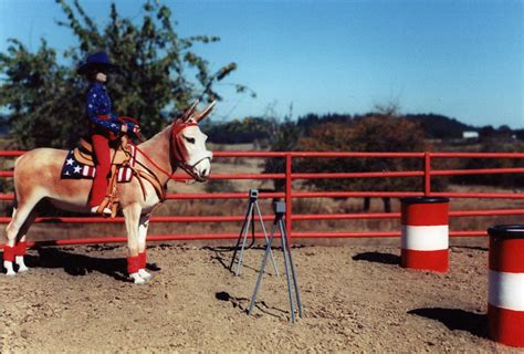 barrel racing home decor barrel racing home decor 28 images probably the