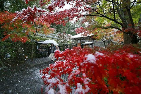 november tokyo tokyo which hasn t seen november snow in 50 years