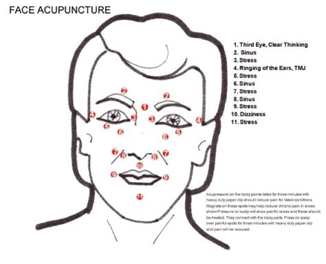 acupressure points for healthy skin facial acupressure facial acupuncture points face acupuncture acupuncture