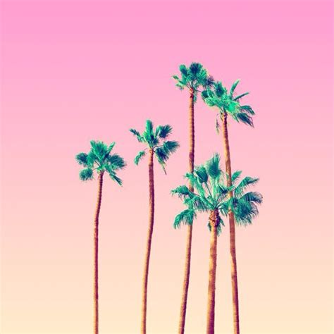 house music playlist 8tracks radio tropical house meets old school rap 19 songs free and music playlist