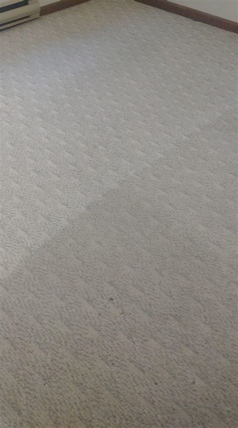 carpet and upholstery katt carpet and upholstery cleaning westfield
