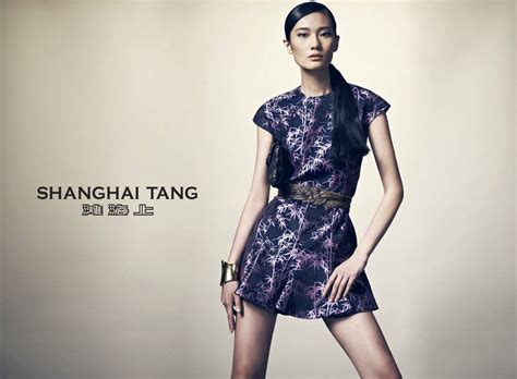 Image Gallery shanghai tang