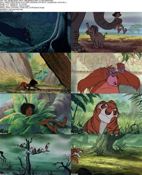 film disney jungle the jungle book disney pinterest the jungle book