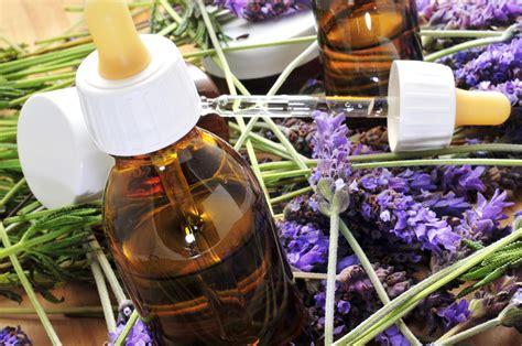 terapia fiori di bach las flores de bach propiedades usos e historia el cuerpo