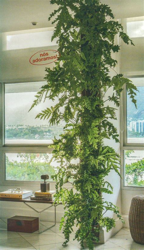 1000 ideas about indoor vertical gardens on