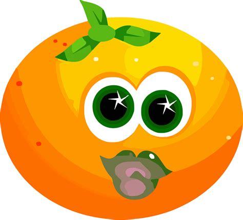 fruit face orange  vector graphic  pixabay
