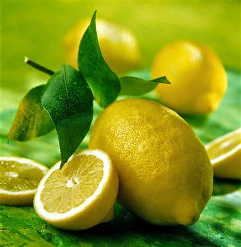 bicarbonato da cucina sale aceto limone bicarbonato in cucina il giardino