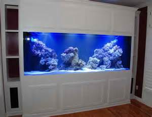 modern aquarium planning ideas perfect modern aquarium designing
