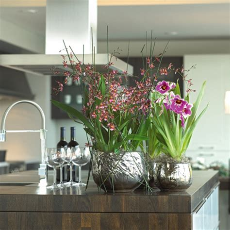 Design For Indoor Flowering Plants Ideas Indoor Flower Decoration Ideas Interior Gardens