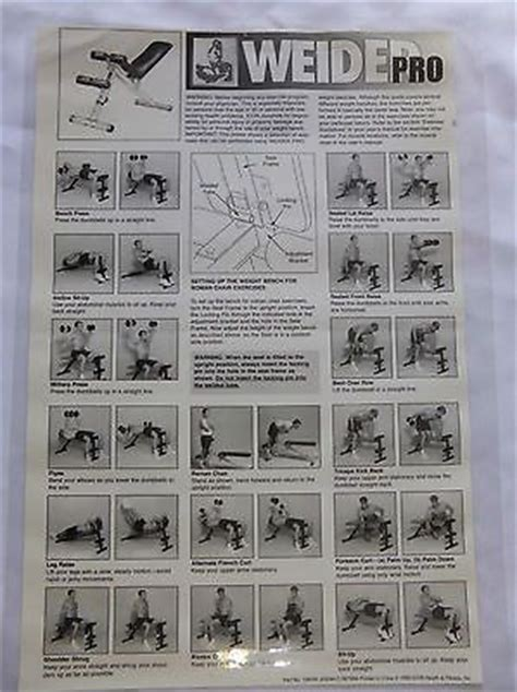 weight bench exercises chart weight bench weider pro 125 excellent condition weight