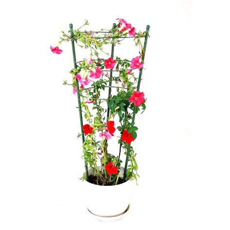 small plant supports vigoro 3 ring small flower support fs 45 54 60 the home