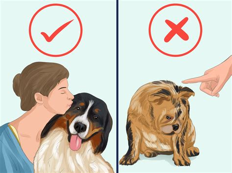 taking care of a puppy how to take care of a with pictures wikihow