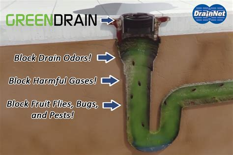 inline floor drain trap sealer green drains liquid breakers