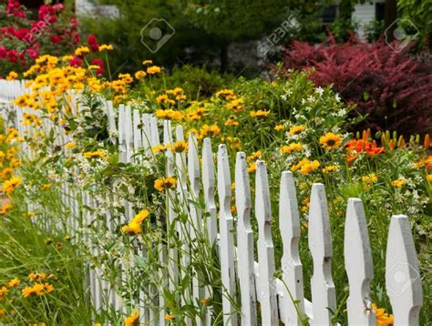 8 Amazing Budget Garden Fence Ideas Gardening Flowers Flower Garden Fence