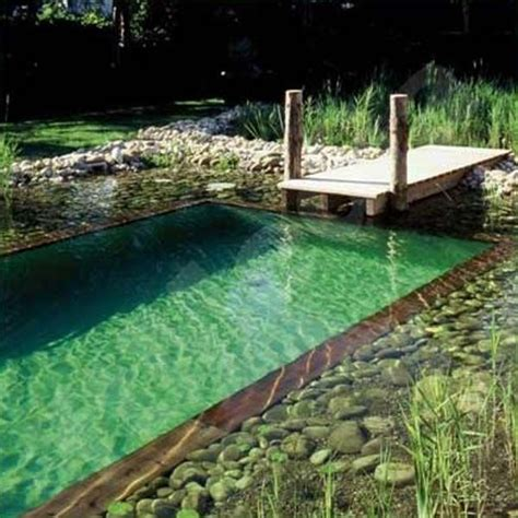 backyard swimming ponds best 25 natural pools ideas on pinterest natural