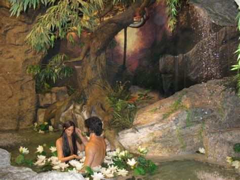 creation museum evolution education care2 groups
