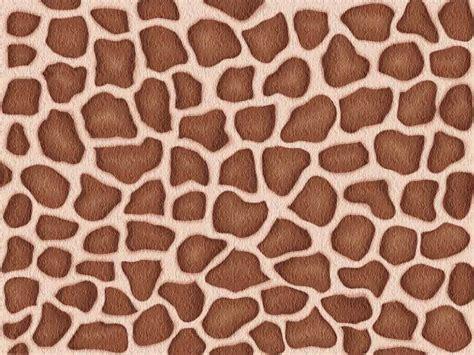 animal pattern artwork do you know your animal prints
