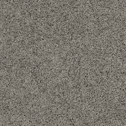 carpet color best 25 carpet colors ideas on grey carpet