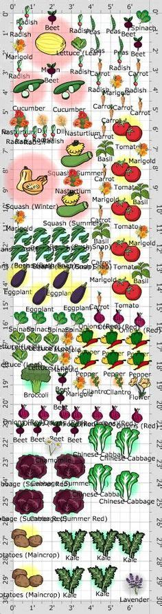 Gardening Charts Tips On Pinterest Companion Planting Companion Vegetable Garden Layout