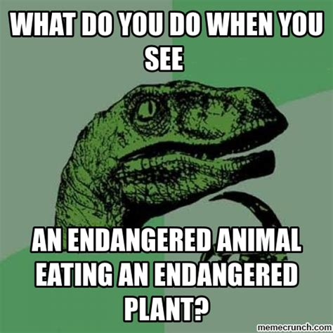 Velociraptor Meme - the gallery for gt thinking dinosaur meme