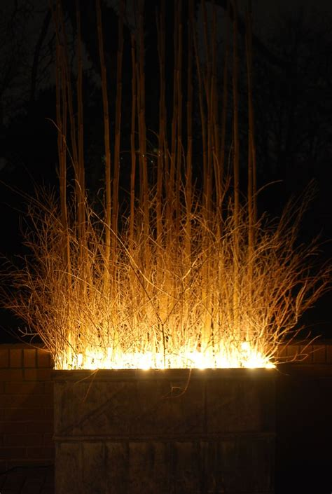 Planter Lights by The World S Catalog Of Ideas
