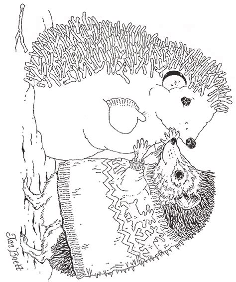 hedgehog coloring book for adults animal adults coloring book books hedgie makes a hedgehog snowman