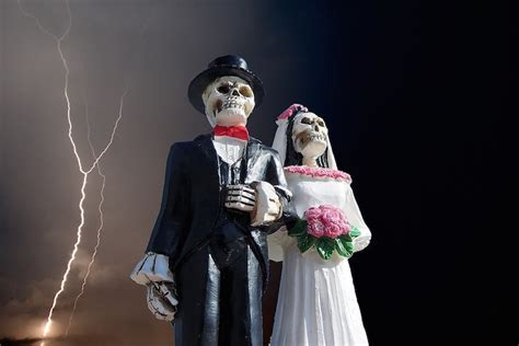 monsanto and bayer tie the knot don t miss the most satanic wedding of the year