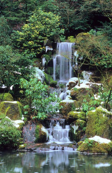 Ponds In Backyard Portland Japanese Garden