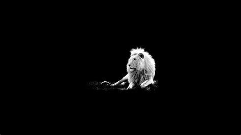 black king wallpaper download wallpapers download 2560x1440 black dark white