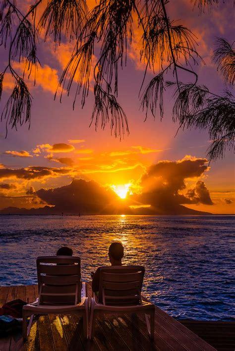 Sun Bell Tuna Rica Rica 25 melhores ideias de p 244 r do sol no por do
