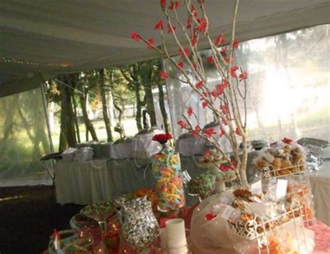 quinceanera themes ideas coral coral cherry blossom quincea 241 era quot cherry blossom 15 a 241 os