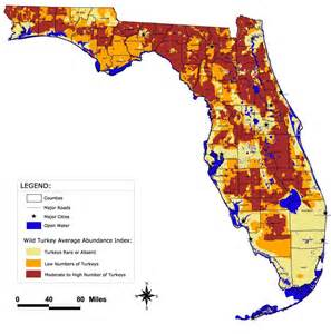 florida wma map florida fish and wildlife conservation commission