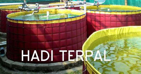 Terpal Kolam Kotak 15x2x050 A15 kolam terpal bulat bundar karet hadi terpal