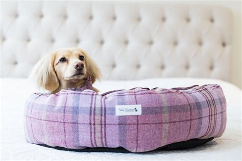 high end dog beds harry barker luxury dog beds personalized dog beds high
