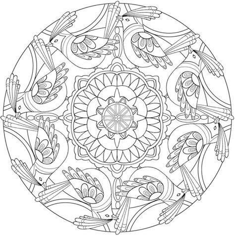 bird mandala coloring pages coloring page 5 of 6 bird mandalas by jo taylor a